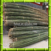 environmental bamboo poles canes sticks