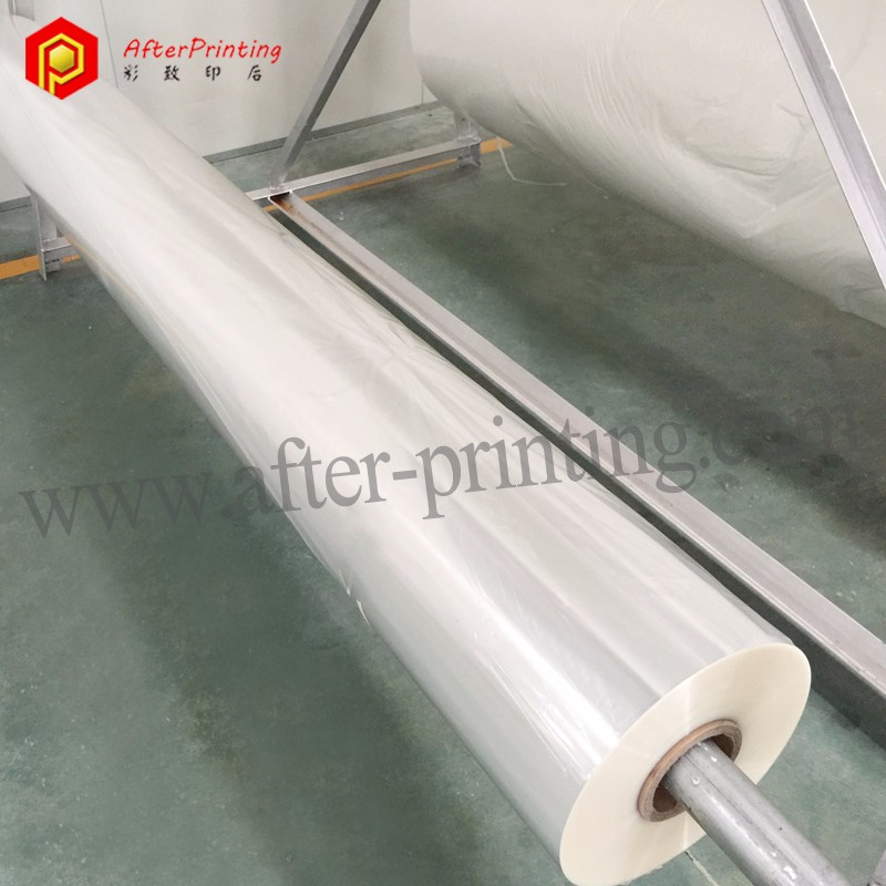 Clear Plastic Protective Film