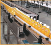 Conveyors Application In Food And Beverage