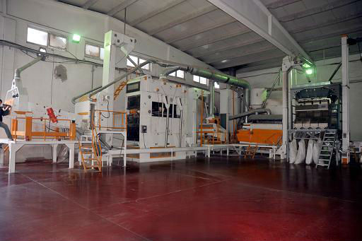 COMPLETE SUNFLOWER CLEANING AND PROCESSING LINE