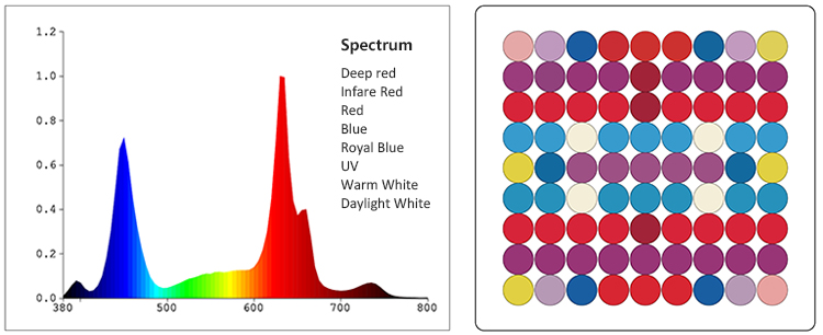 grow light spectrum-1