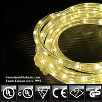 LED rope light home depot suppliers