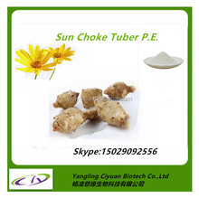 Health-care Artichoke/Sun Choke Tuber P.E. Inulin Powder 90% CAS NO.:9005-80-5 manufacture in China