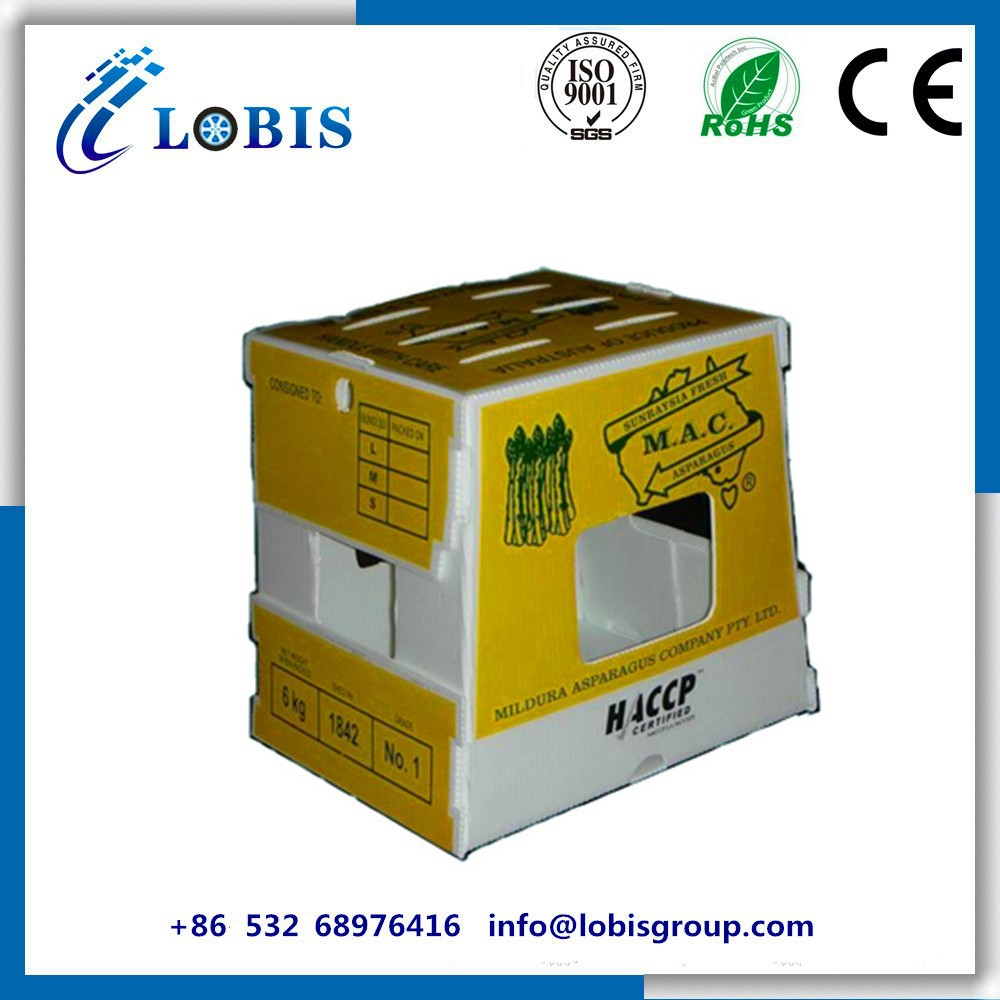 Fruits/ Vegetables Coroplast Packaging Box