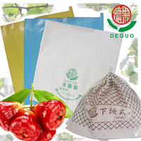 DEGUO wax apple bag Fruit growing protection wrapping Window structure paper bag