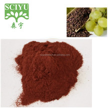 Natural Antioxidant Product Grape Seed Extract/Vitis vinifera Extract Proanthocyanidins 95%