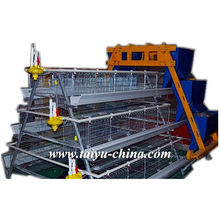 Taiyu Poultry Egg Layer Cage with Hopper feeding equipment and Egg collection equipment