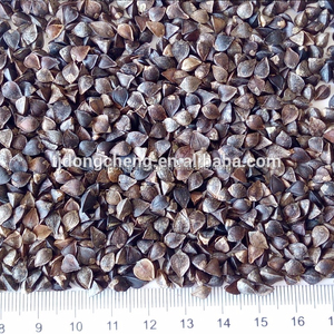 Buckwheat Common Cultivation Type and Brown Color