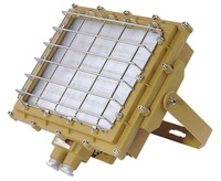 Hot new product outdoor flood light 100w LED floodlight