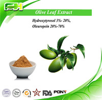 Natural Free Sample Health Food and Beverage Additive Olea europaea L. Olive Leaf Extract Powder