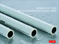 The high quality competitive price white ppr stainless pipe/tube