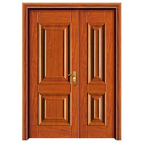 Front Single Main Front Safety Door Designs
