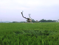 crop dusting unmanned helicopter