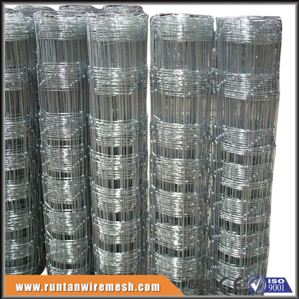 Factory Direct Sale Galvanized farm animal fencing ( ISO9001-2008)