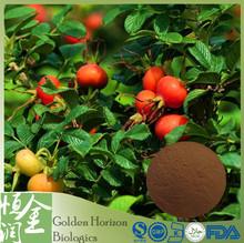 Free Sample Natural Rose Hip Extract Powder Price