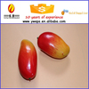 Wedding Decorative Artificial Fruit Mango Fake