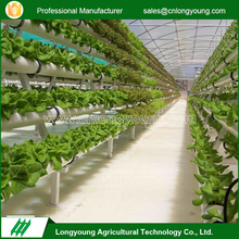 Low cost farming vertical hydroponic greenhouse