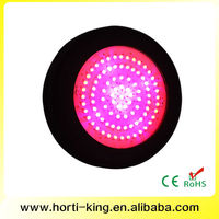 low cost agricultural greenhouses led lights for plant grow