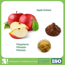 Skin Whitening Rich in Phloretin/Phloridzin Organic Apple extract Polyphenol Powder