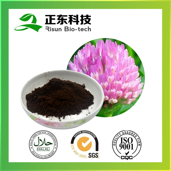 Powder Form and Liquid-Solid High Quality Natural Red Clover Extract 8% isoflavone powder