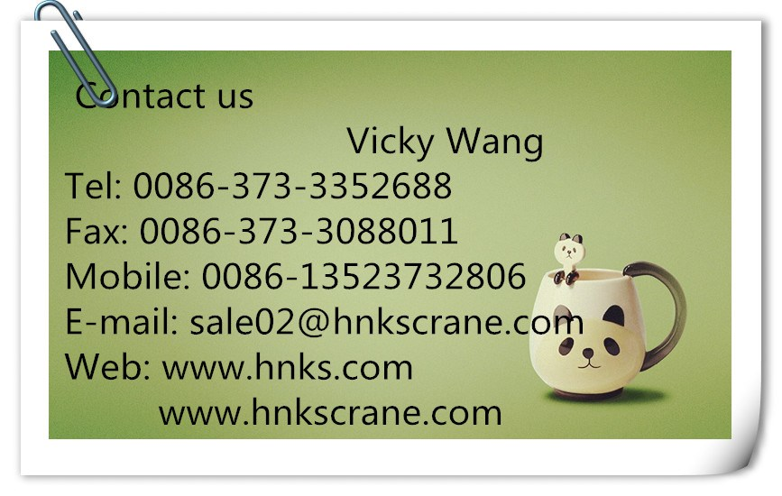 Henan Mine Crane Electric Hoist