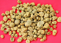 90% Corydalis extract powder / Yanhusuo extract / corydalis extract