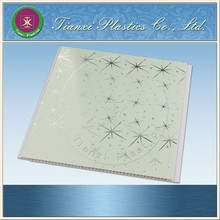 Silver Star Light Green Underpainting PVC Gusset Plate