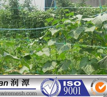 2014 hot sale PP nets\bird nets\vineyard nets