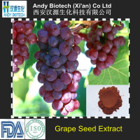 95% Polyphenols Grape Seed Extract Powder,Herbal Extract supplements OPC grape seed plant extract powder