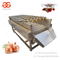 Automatic Vegetable and Fruit Washer Machine Strawberry Onion Washing Machine