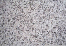 SHAN DONG low price and quality of stone sesame white granite G365 in 600*600MM