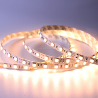 5 meters SMD5050 12V Flexible LED Light Strip Waterproof IP67 Low Power Consumption