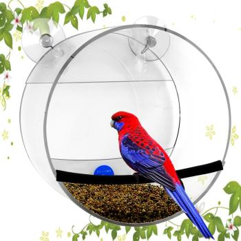 High Quality Acrylic Bird Feeder With 2 Suction Up