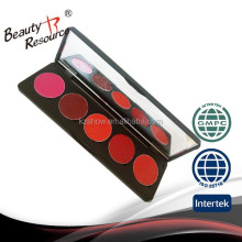 lipstick palette unlabeled matte lipstick 5 colors lipstick cream pallet with brushes