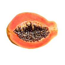 Red Lady Papaya seeds hybrid with good price