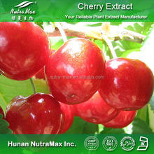 Pure Cherry Extract, Cherry Extract Powder, Cherry P.E.(Ratio:4:1~20:1,