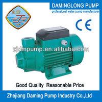Brass Impeller Qb Water Pump