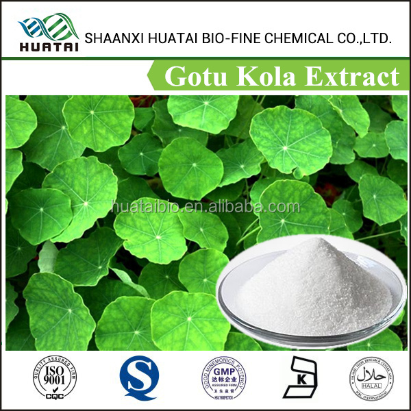 Gotu Kola Extract Water Soluble Asiaticosides 40%, High Quality Gotu Kola Extract