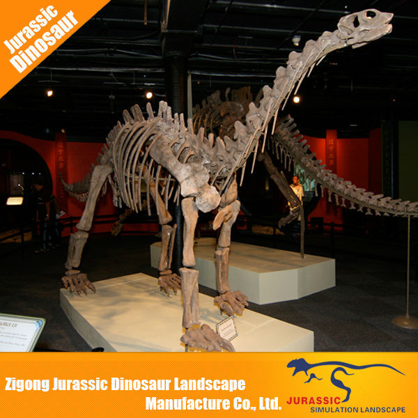 Animated dinosaur skeleton for sale life size dinosaur bones
