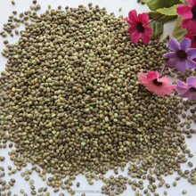Hot Selling Wholesale Agricultural Hemp Seeds