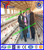 2016 Hot sale !Professional High quality egg chicken farming/layer chicken cage