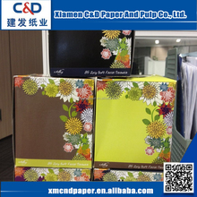 Hot Sale Customized Printing Virgin Wood Pulp Flat Facial Box Tissue