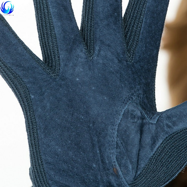 Cheap ladies thinsulate lined blue suede gloves