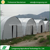 Low Cost Professional Agriculture Mushroom Greenhouse