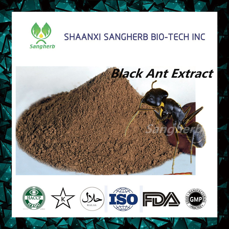 Black Ants P.E. Triterpenoid for Reducing Blood Fat