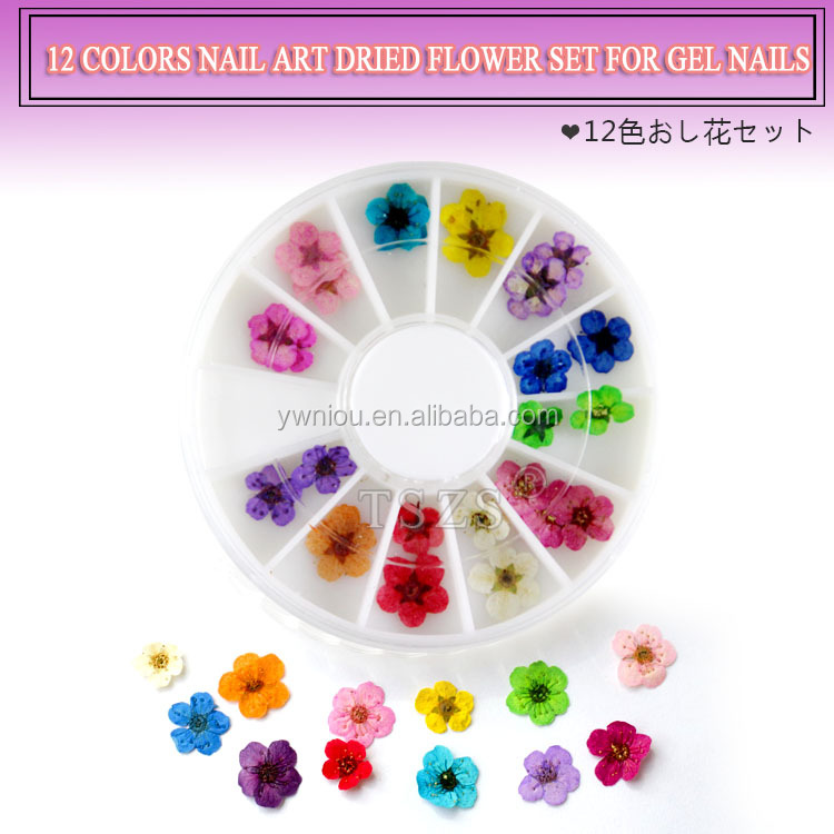 12 color per set nail art dry flower