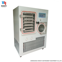 China freeze drying food fruit and vegetables equipment with high quality