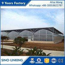 SINOLINKING hydroponic systems with greenhouse plastic cover for tomatoes