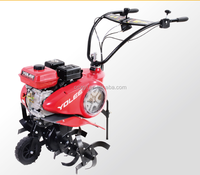 6.5HP Garden B&S Gasoline Cultivator Tiller French China European Garden Tool Set Tools
