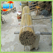 Agriculture/Bamboo Raw Materials/Good fiber bamboo canes 120cm 10-12mm